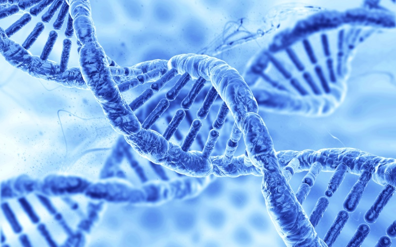 Genética y blockchain
