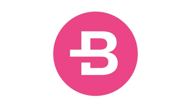 Bytecoin-Logo