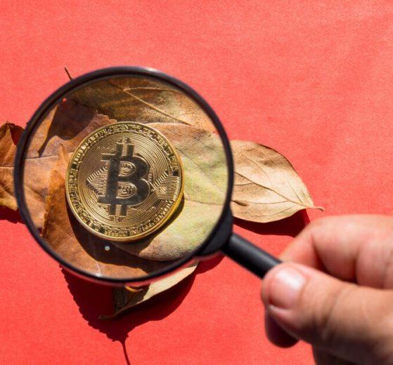 Los academicos no entienden a Bitcoin